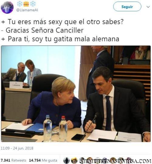 merkel,pedro sanchez, presidente españa,humor,memes,viñetas,politicos