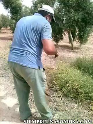 WhatsApp Video 2018 06 19 at 18.56.02 thumb0 - El hombre y su presa frente a frente