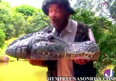 vidoes de bromas, cocodrilo,