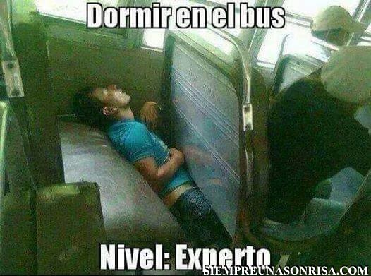dormidos,autobus,nivel experto,humor,fotos