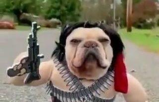 Definamos esto, Rambo o Machete.. - - miniatura