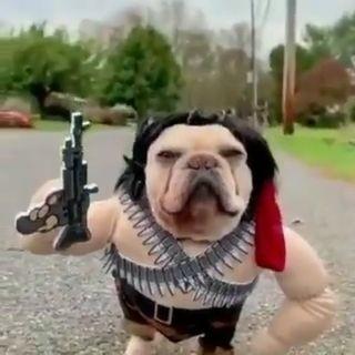 Rambo o Machete..?