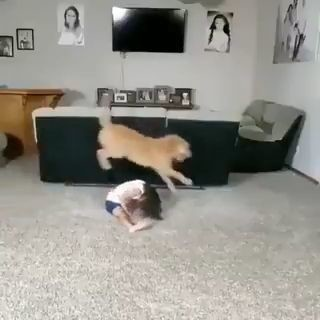 Este vídeo me ha hecho el día JAJAJAJA miniatura