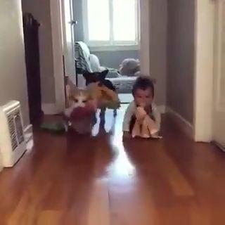 Si tienes un mal día mira este vídeo y se te pasará. miniatura