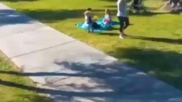 Perrito entrenado para proteger a niños de secuestradores