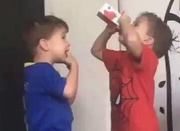 niños, pelea, videos,humor,graciosos