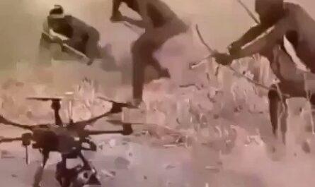 videos humor, tribus, monos, drones, dron, civilización, risas