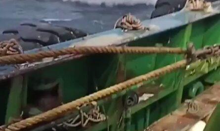Ese barco si se sabe divertir