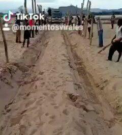 La unión hace la fuerza! Tik Tok Videos
