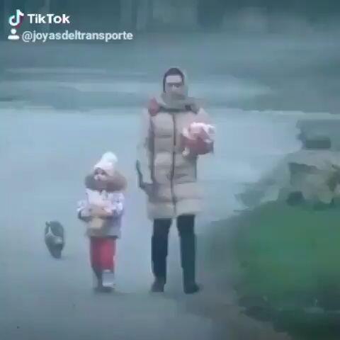El mejor guardaespaldas ! videos de TikTok