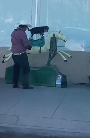 El ama mucho a su firulais
