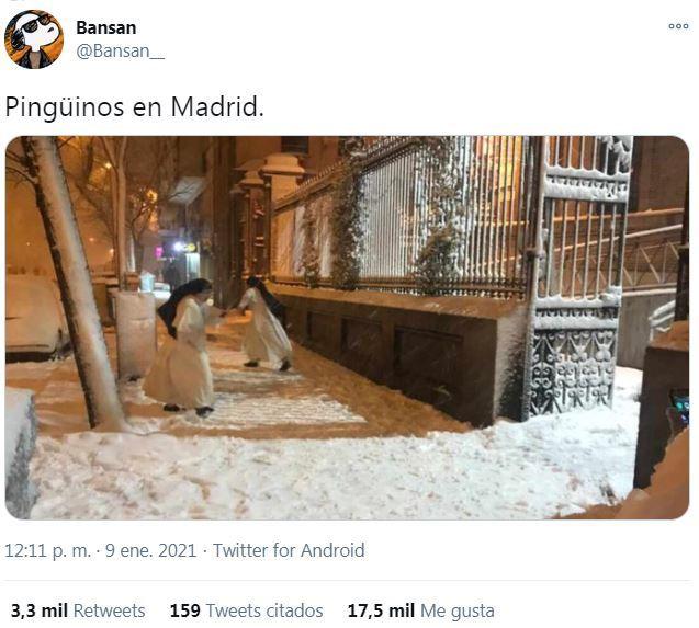 Filomena trae pinguinos a Madrid