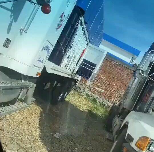 Camioneros Fails – Gente Que Se Extingue Sola
