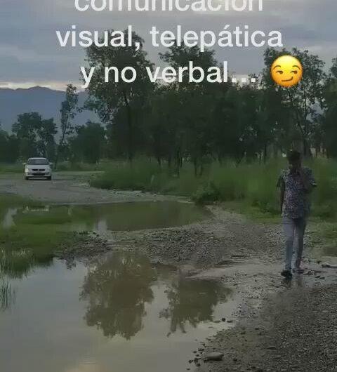 Comunicación visual, telepática y no verbal